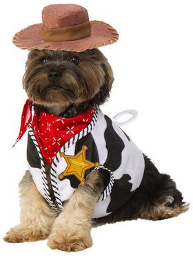 Disney Toy Story Woody Pet Costume Set