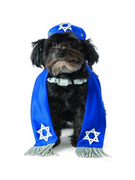 Yarmulke and Tallis Pet Classic Costume