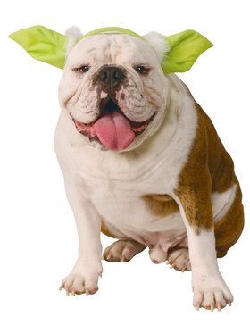 Star Wars Classic Dog Yoda Ears Headwear